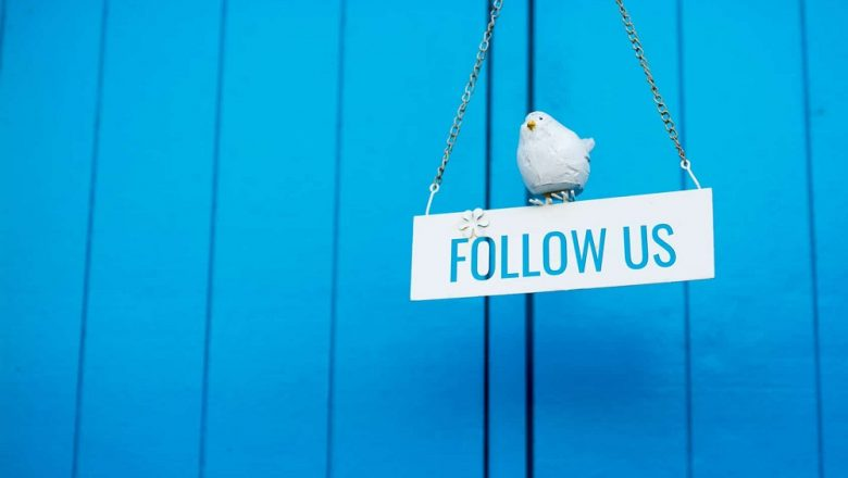 Growing Organically On Twitter: The Importance & Impact Of Followers
