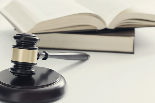 THE ROLE OF EXECUTIVE OFFICER AND CLERK IN THE JUSTICE SYSTEM
